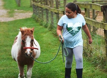 Bucklebury Farm & Deer Safari Park